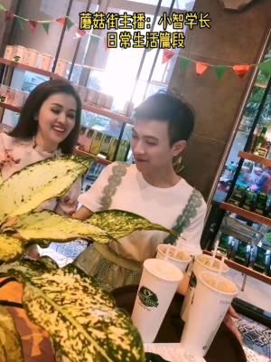 #日常#不会越南语如何优雅地点一杯咖啡?越南的咖啡店遍地都是,一大杯不到20元。我喜欢喝汽水,你喜欢喝什么饮料呢?